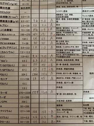 238756FD-8A16-43CF-B032-8AA4DC19CA39.jpeg