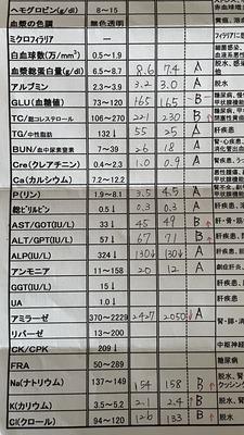 8E620121-6842-43FF-B2BE-B151F363FB1B.jpeg