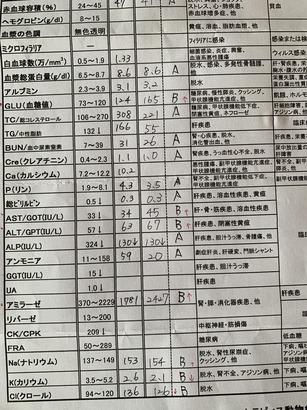 90C88F72-C935-4D76-9F2C-7EE4649432DE.jpeg