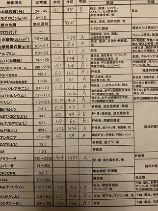 C49A9ED6-2423-468A-97D1-18C9D189C424.jpeg