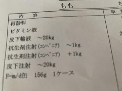 F067CAB7-BFD7-45A1-9513-84C6D4B14105.jpeg